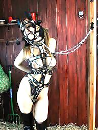 Trained, Bdsm training, Bdsm train, X-training, Trains, Training