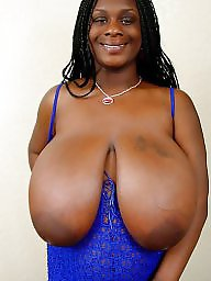 Ebony bbw, Huge, Huge boobs