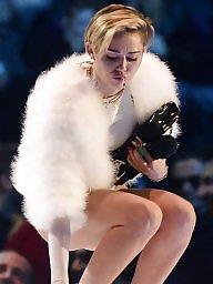 Mileys, Miley, Celebrity camel