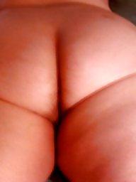 Ass, Asses