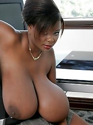 Ebony, Black, Office