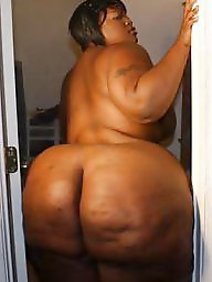 Big black ass, Black bbw, Ebony bbw, Ebony big ass, Ebony ass, Bbw ass