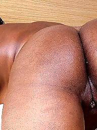 Bbw black, Pussy, Ebony, Bbw pussy, Black, Black pussy