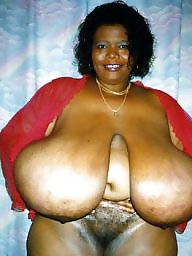 Milfs and, Milf ebony, Milf blacked, Milf and black, Ebony,black,chocolate, Ebony, milf