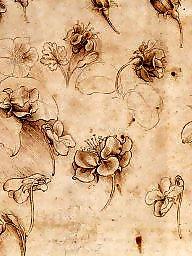 Vintage funny, Vinci, Leonardo