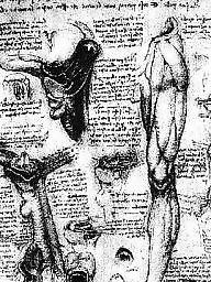 Vintage b&w porn, Vinci, Leonardo