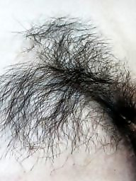 Hairy asian, Asian hairy, Amateur hairy, Asian, Asian amateur, Hairy