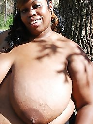 Bbw black, Ebony bbw