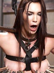 Tits bdsm, Tit bondage, Bondage