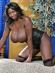 Milfs all, Milf ebony, Milf blacked, Milf and black, Milf wear, Ebony, milf