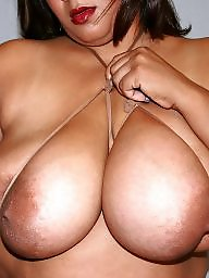 Ebony bbw, Bbw black, Bbw latina, Big bra